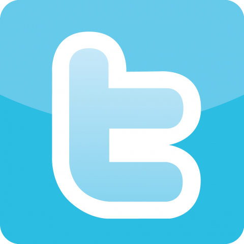 Twitter-Logo-Icon-transparent_0.png