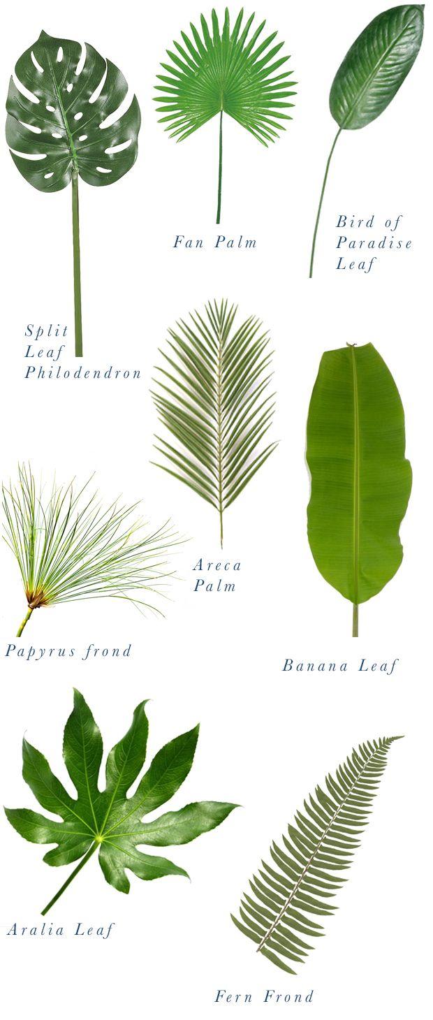 plant-inspiration-ninushko-3