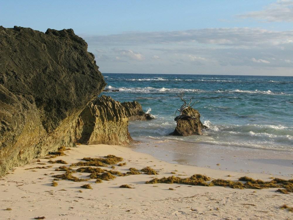 DGordin_080000_Bermuda_0018.jpg
