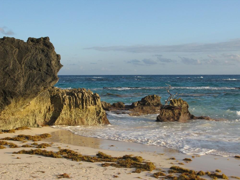 DGordin_080000_Bermuda_0019.jpg