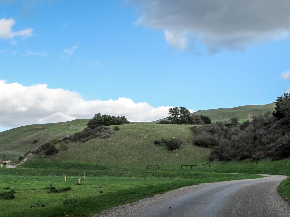 DGordin_080000_NSB_Ranch_0003.jpg