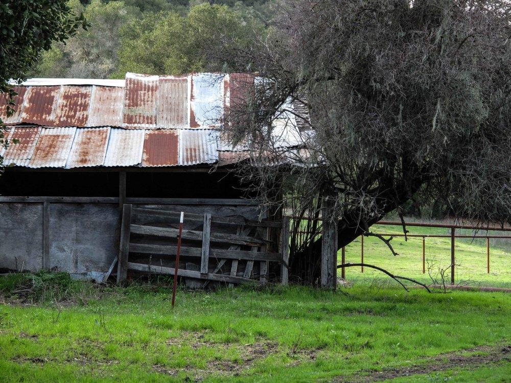 DGordin_080000_NSB_Ranch_0009.jpg
