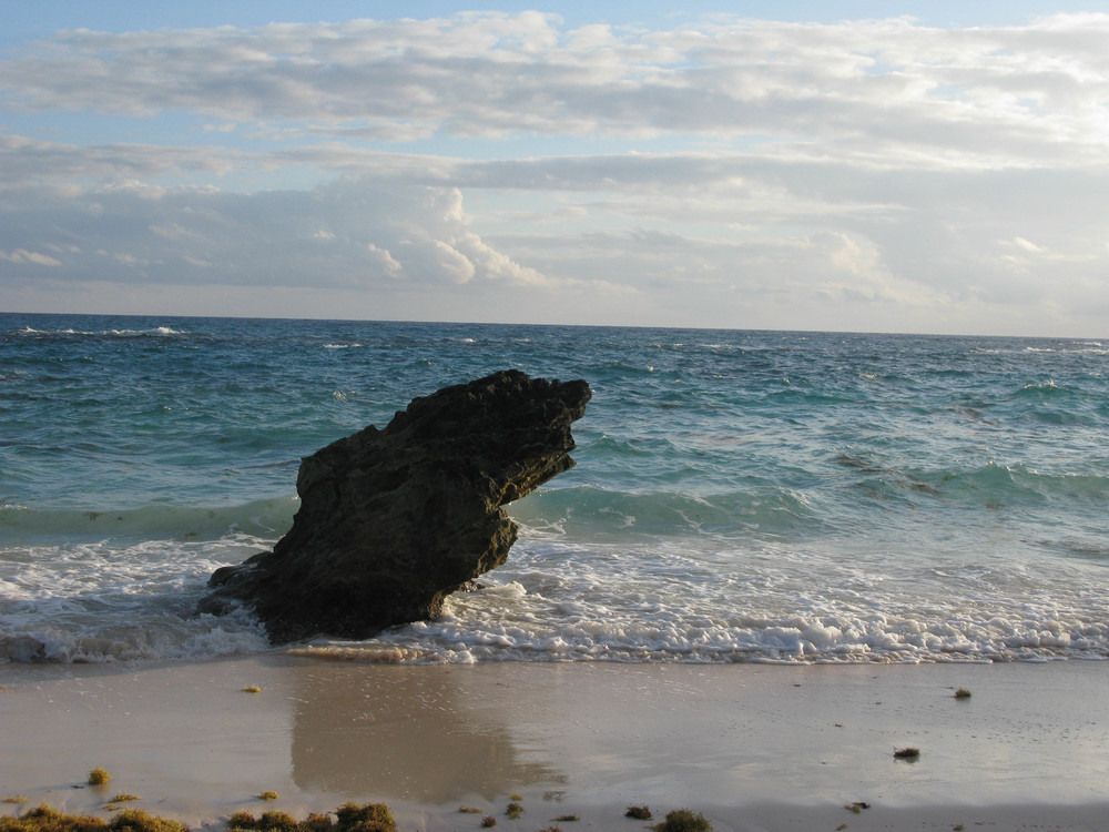 DGordin_080000_Bermuda_0021.jpg