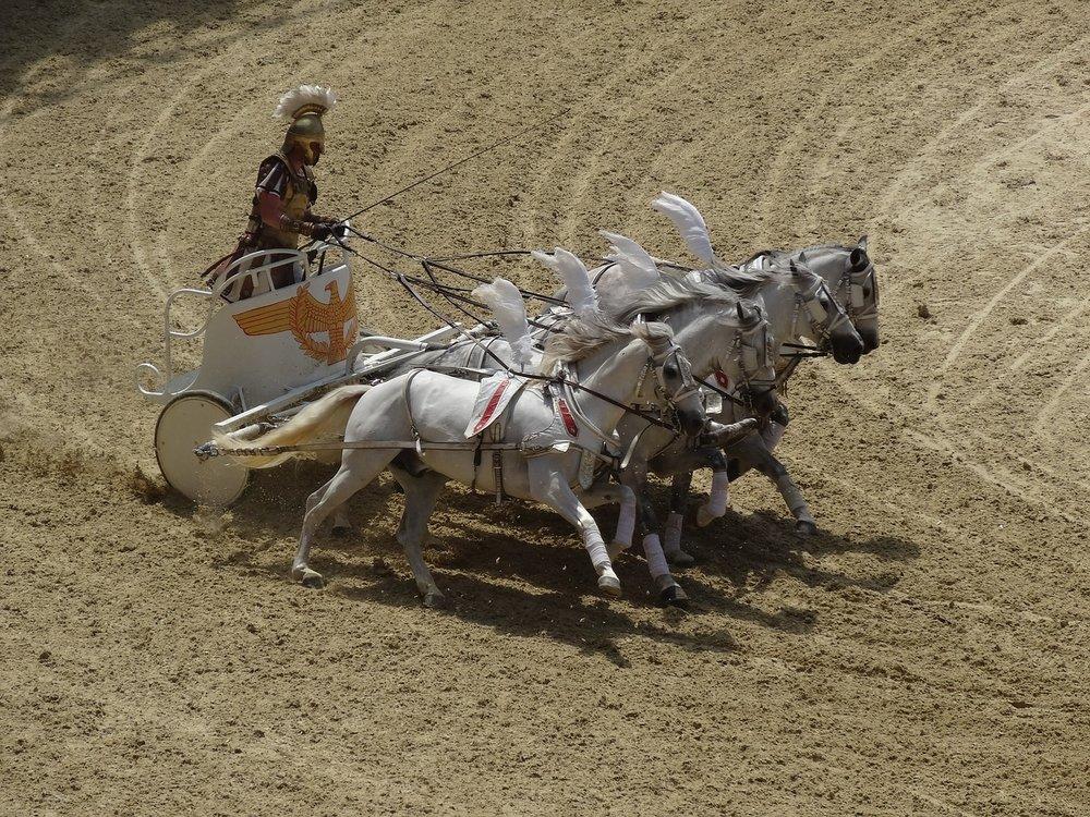 horses-1976554_1280.jpg