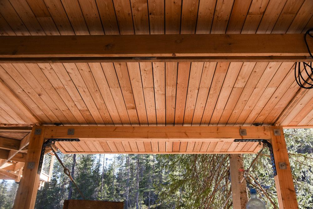 treehouse 1.05.17-0750.jpg