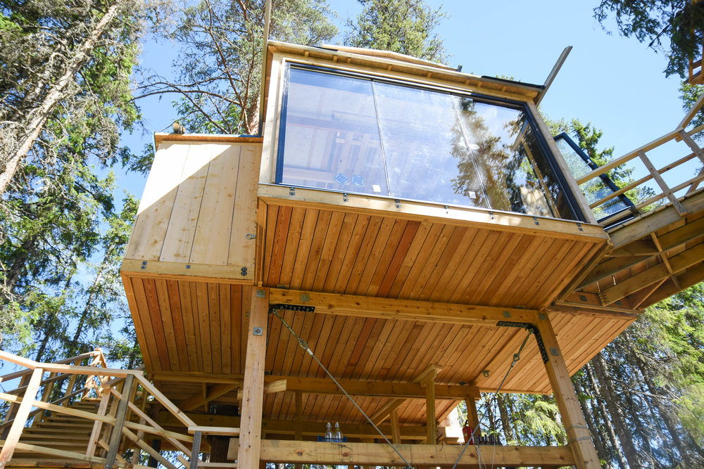 treehouse 03.07-1.jpg
