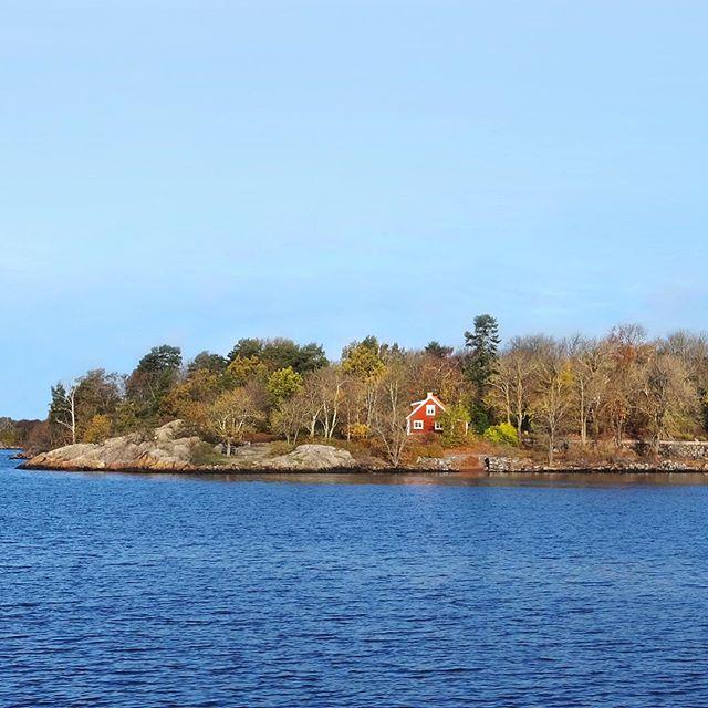 Le froid, le silence et la solitude sont des états qui se négocieront demain plus cher que l'or. Sur une terre surpeuplée, surchauffée, bruyante. S.Tesson #danslesforetsdesiberie #sweden #kessadlapeche
