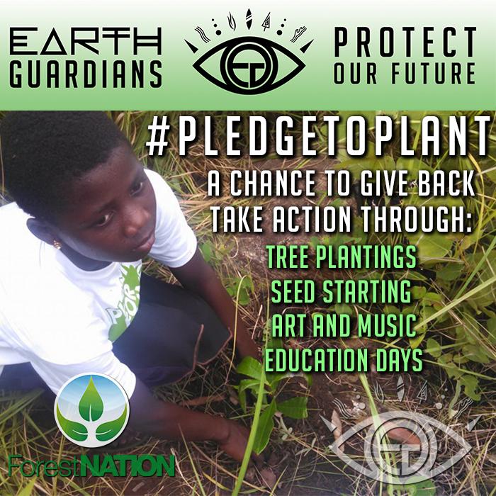 POF PledgeToPlant.jpg