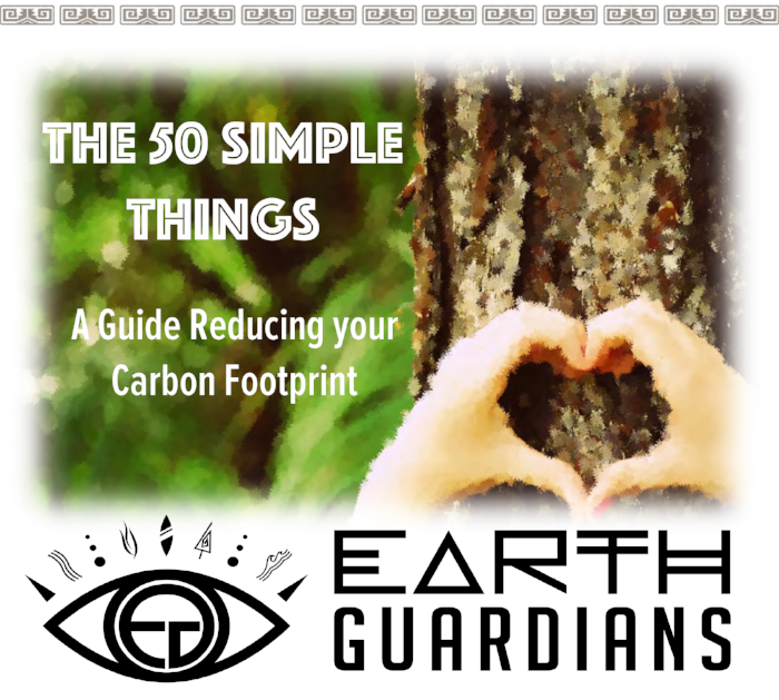 Earth-Guardians-50-Simple-Things.png