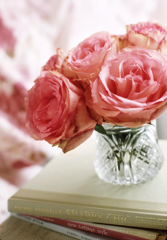 pink-rose-detail.jpg