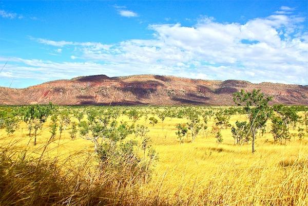 outback-389049_960_720.jpg