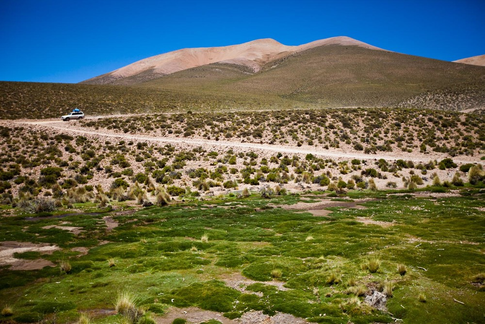 5000 meters above sea level: Altiplano, Bolivia