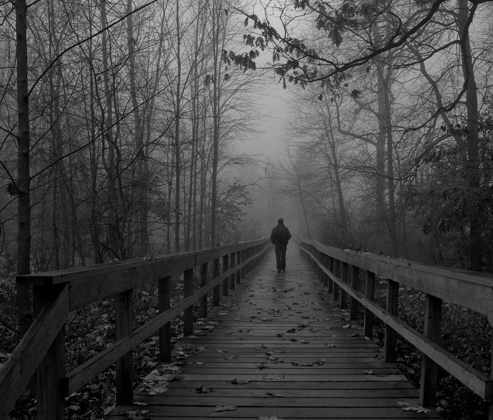 walking in the fog.jpg