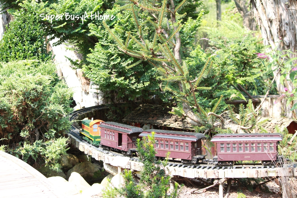Fernwood Botanical Gardens Train Garden Super Busy at Home
