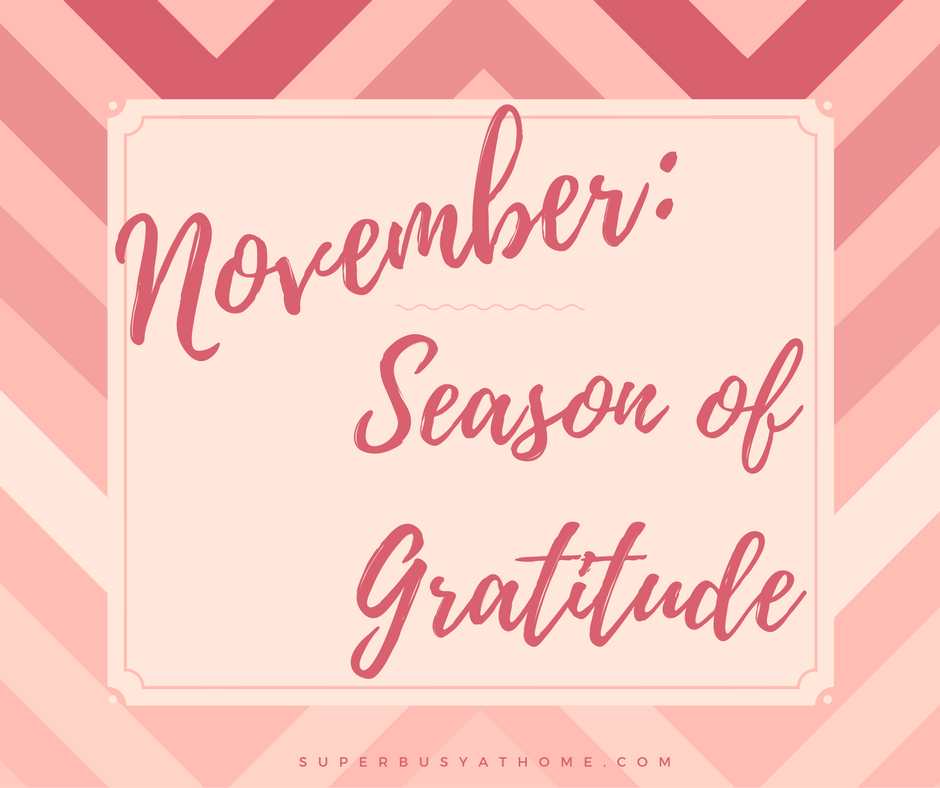 November is the Season of Gratitude.  Find out what I'm thankful for at Super Busy at Home.