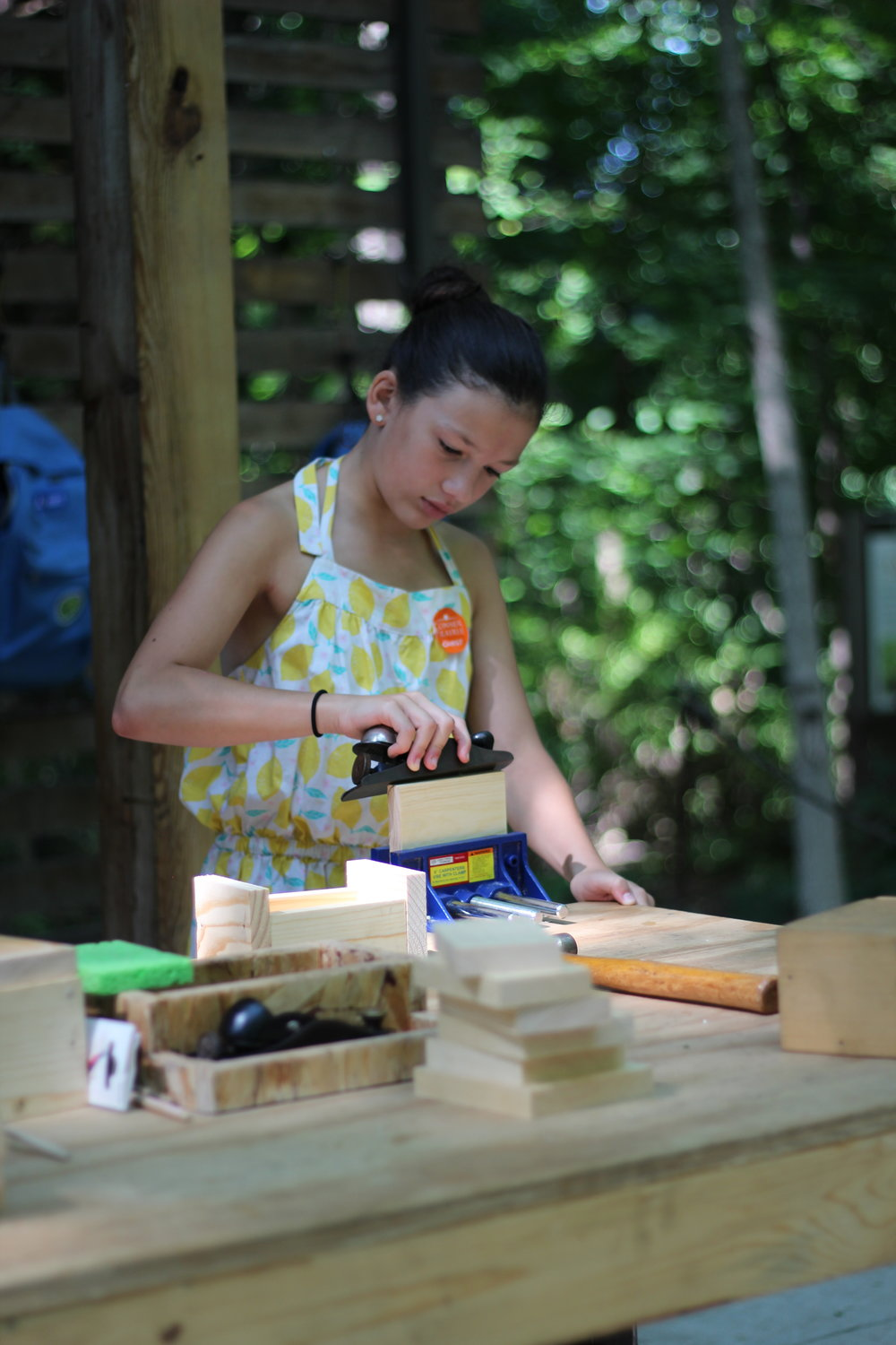 Finishing the Treasure Box, Treetop Workshop, Conner Prairie