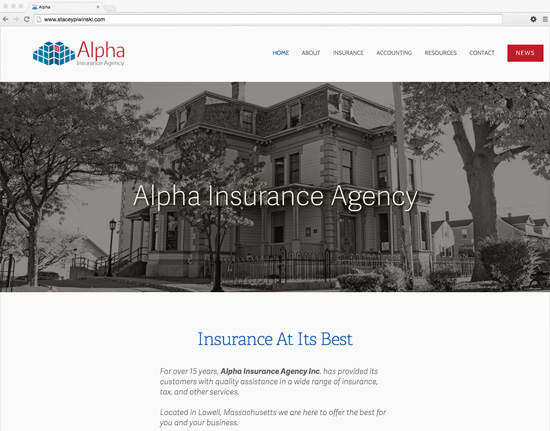 Alpha Insurance Agency - Insurance and Accounting