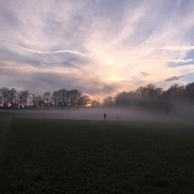 No filter needed on our family walk at dusk ✨#mist #misty #countryside #countrysidewalk #wintersunset