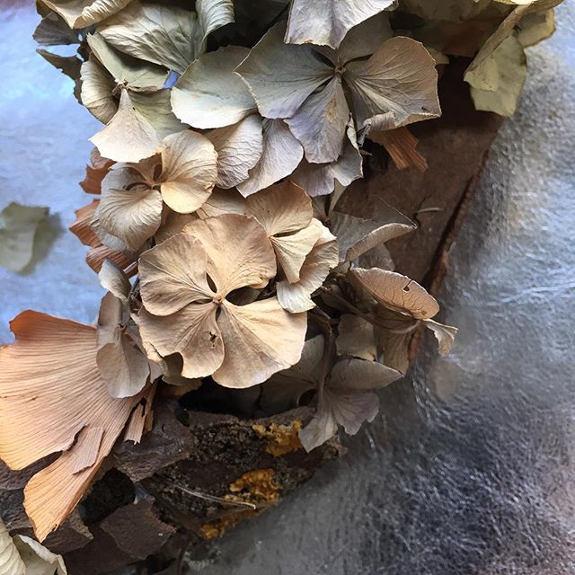 Detail from a dried flower wreath I made a couple of years ago, I love how it's faded over time ✨#driedflowers #florist #floralstlist #hydrangea #ginkobiloba