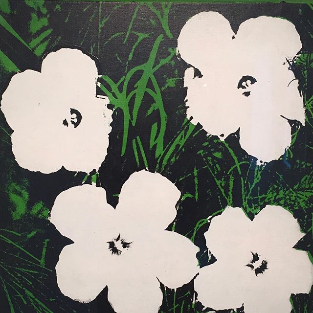 A photo of Andy Warhol's 1964 Flowers from a recent trip to the incredible @guggenheim_venice 💚#andywarhol #peggyguggenheim #flowers #art