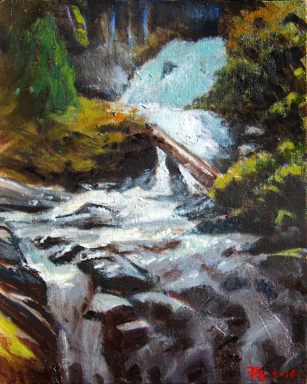 Upper Whiskeytown Falls , 10 x 8 in.  Oil on canvas. Private collection. (2016)