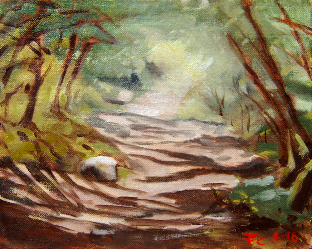 Sunlight on Brandy Creek Trail , 8 x 10 in.  Oil on canvas. Available for purchase. (2016)