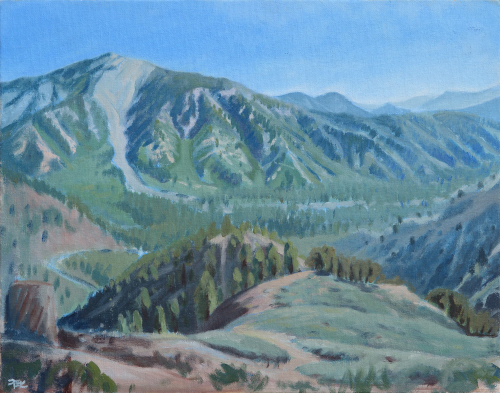 Pine Mountain Rockfall,  11 x 14 in.  Oil on canvas. Available for purchase. (2017)