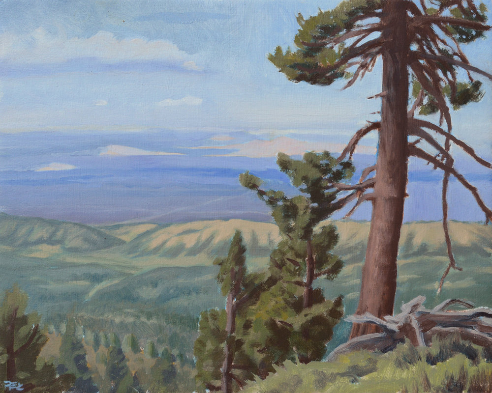 The Mojave from the PCT,  8 x 10 in.  Oil on panel. Private collection. (2017)