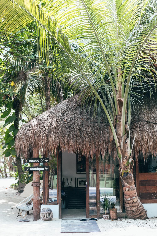 Casa Violeta _ Tulum Boutique Hotel043.jpg