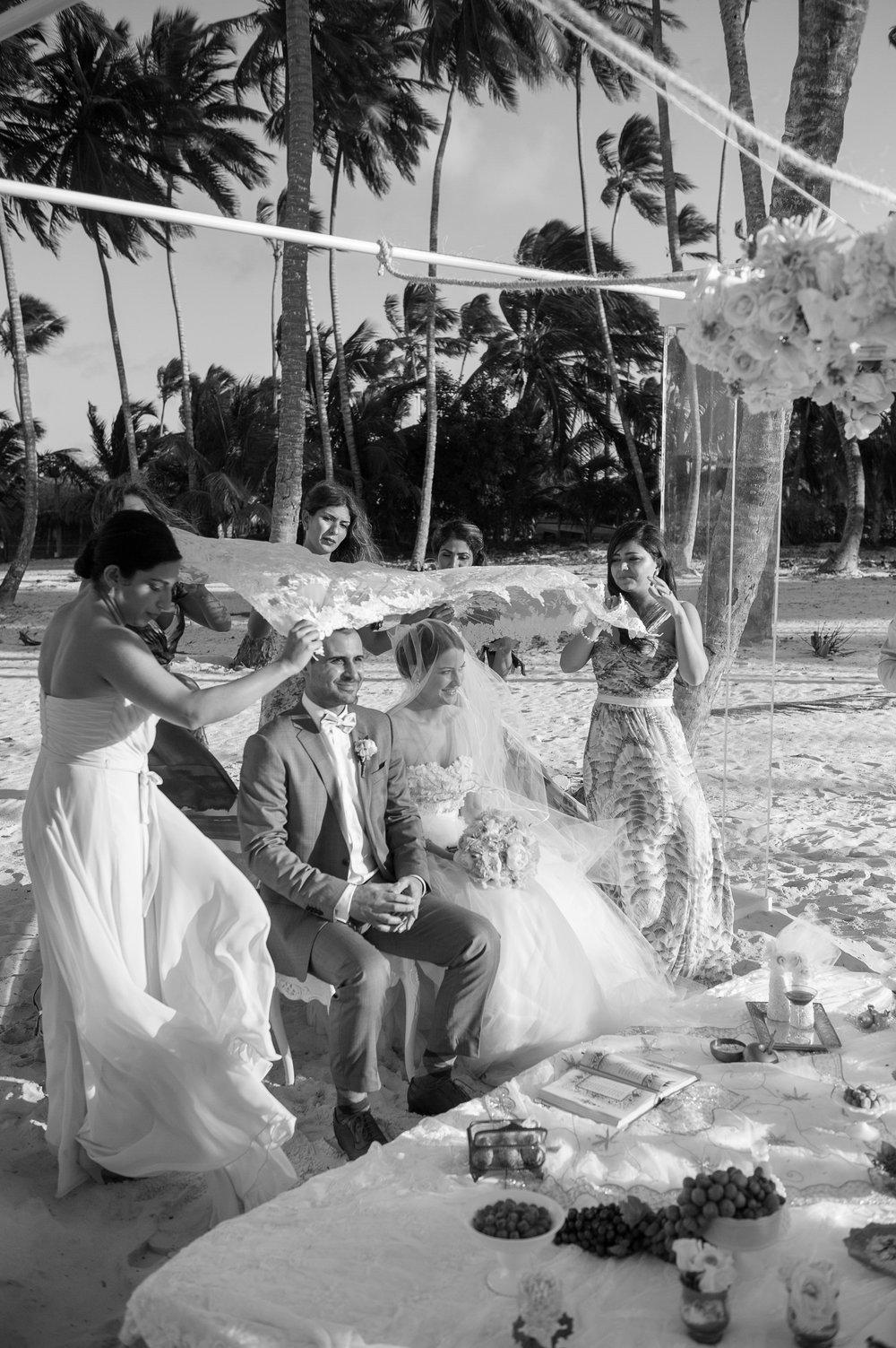 Jellyfish Wedding