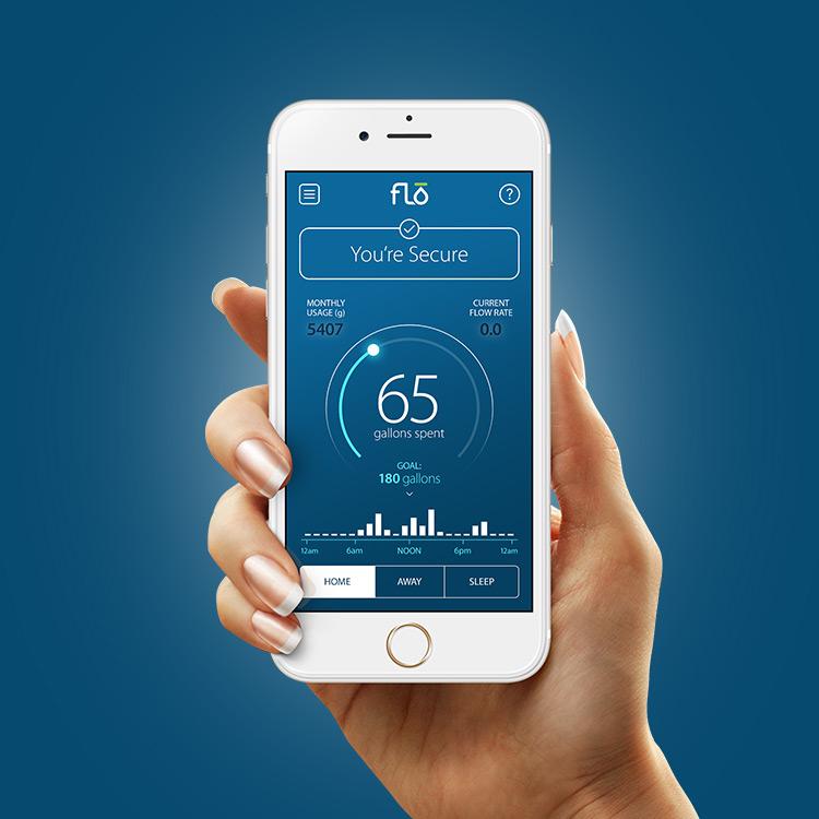 Flo-Branding-Packaging-App-Design.jpg