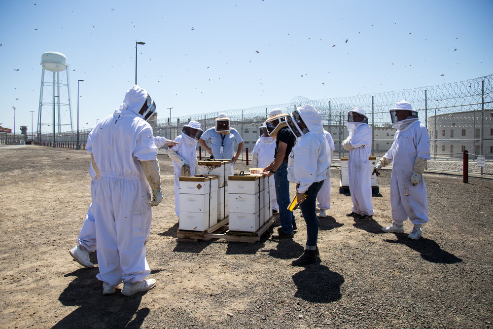 """Ten beekeeping students at Washington State Penitentiary achieved apprentice-level certification during the summer of 2016."""