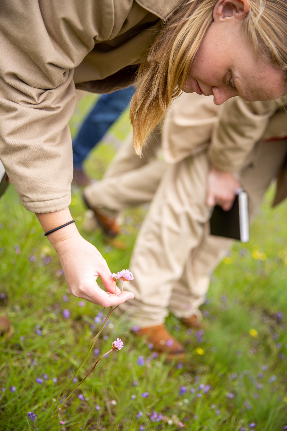 The prairie conservation nursery team from Washington Corrections Center for Women helps restore native landscape. -
