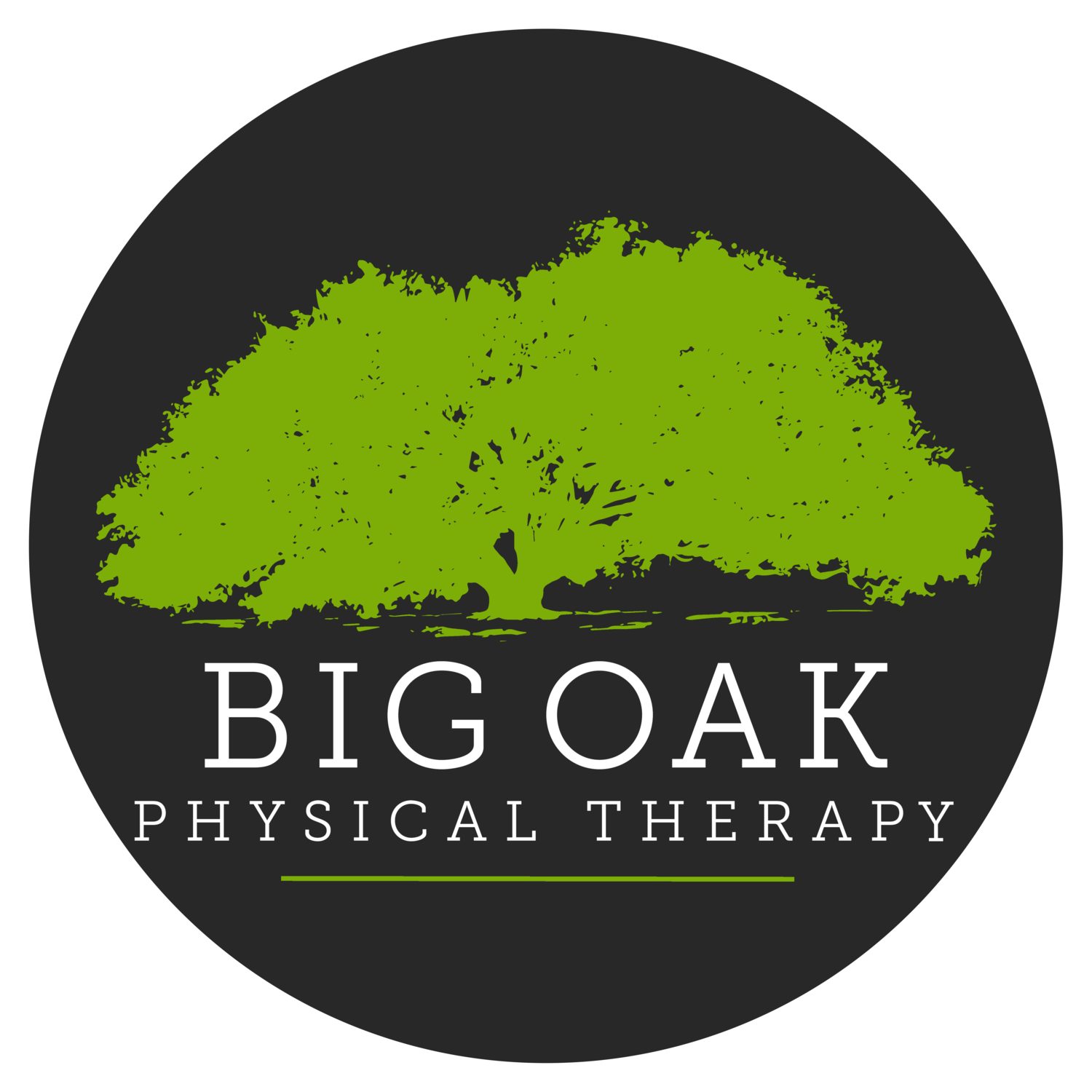Big Oak Physical Therapy