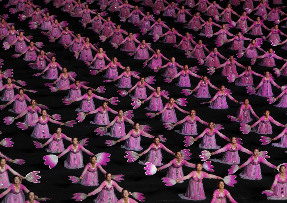 arirang pink row.jpg