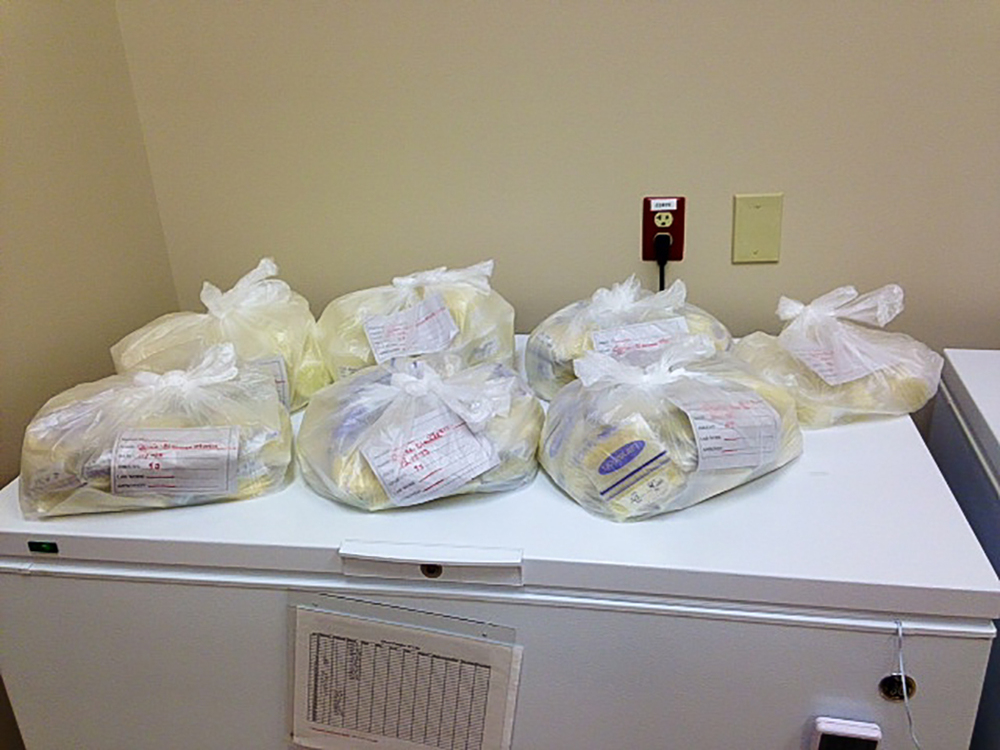 Donated 4.6 gallons of breastmilk  2013 Image by Brooke Carter, OhioHealth Mothers' Milk Bank