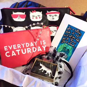 "Monthly ""CatLadyBox"" Subscription - $34.99 monthly"
