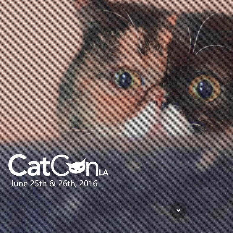 Tickets to CatConLA - approx. $25