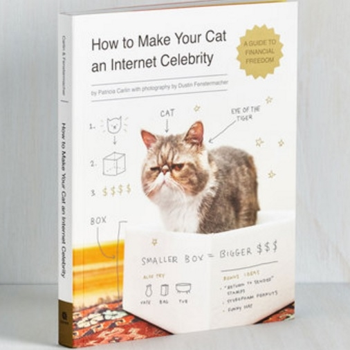 How to Make Your Cat an Internet Celebrity Book - $12.99