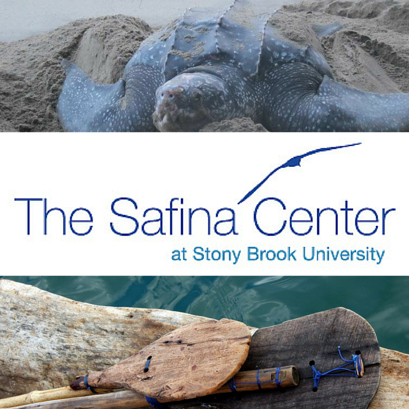 Interested in conservation?  Check out Carl Safina's organization by clicking the photo.