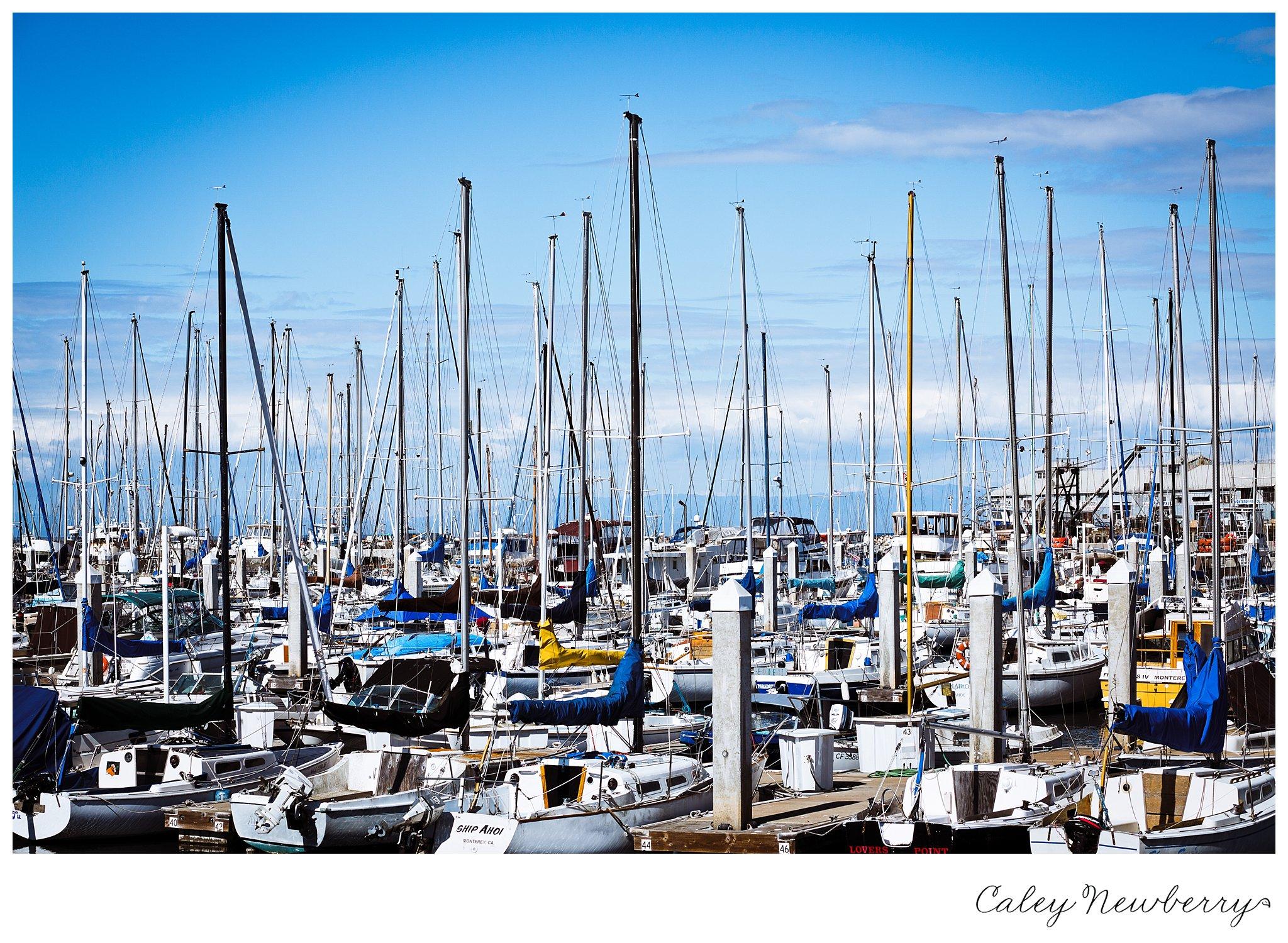 monterey-ca-boat-dock.jpg