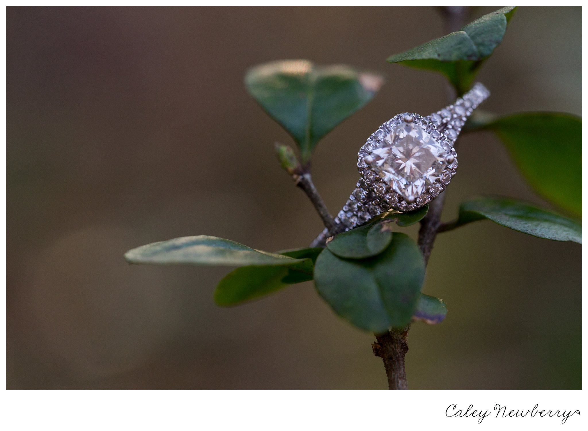 engagement-ring-macro-nashville-photographer.jpg