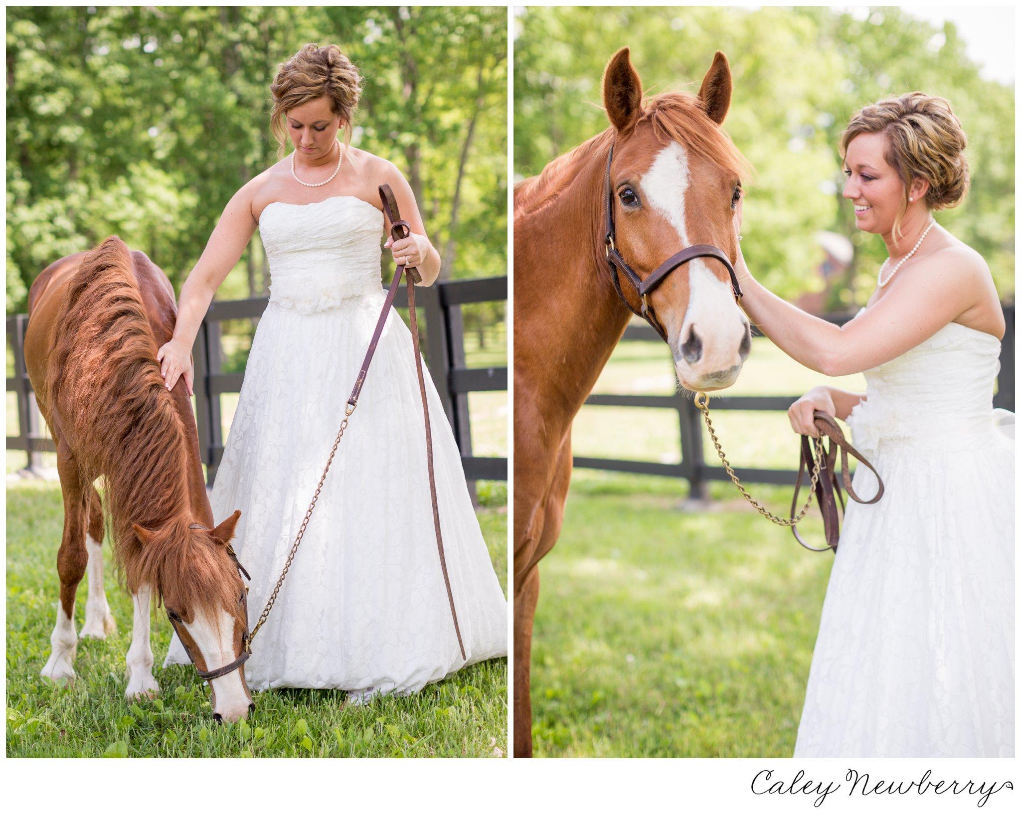 terian-farms-bride-with-horse.jpg