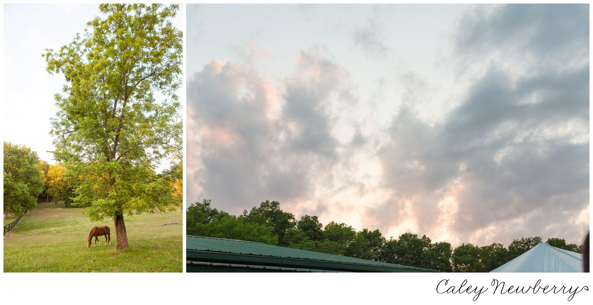 terian-farms-scenery.jpg