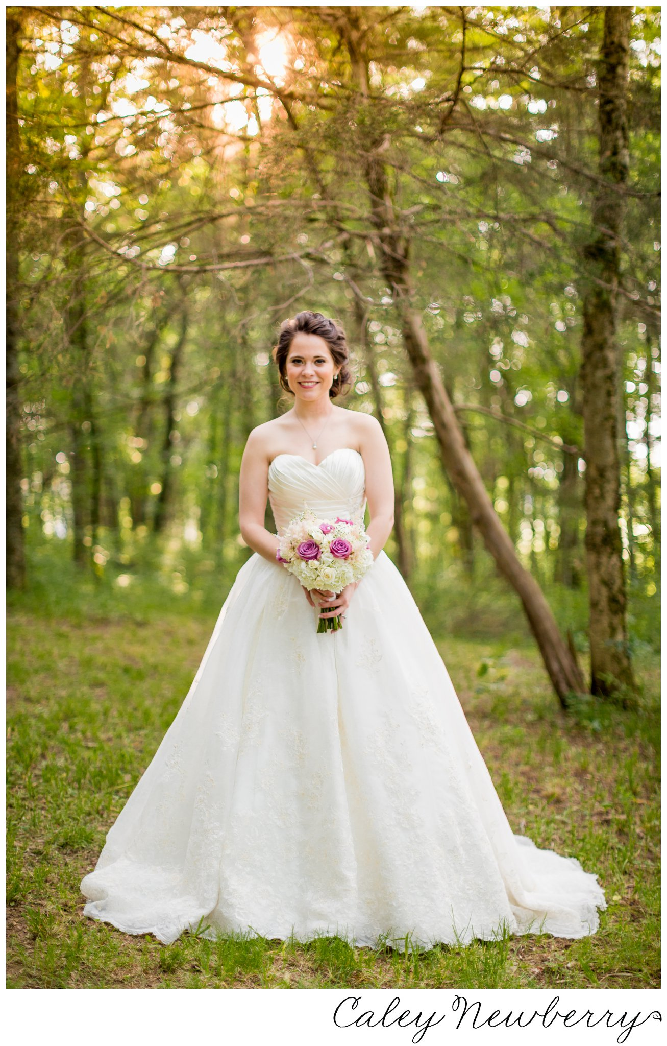 natural-light-bridal-portrait.jpg