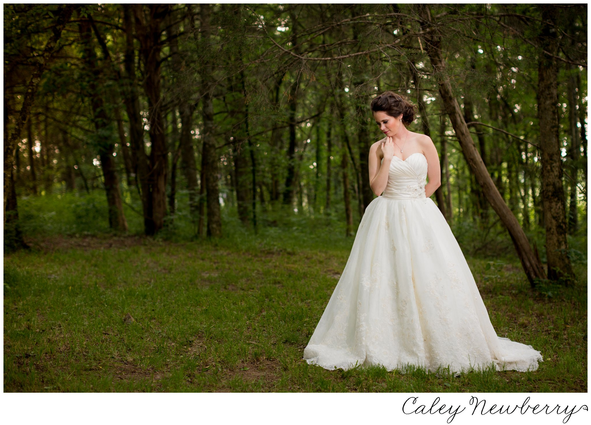 bridal-portraits-at-arrington-vineyards.jpg