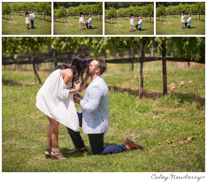 arrington-vineyards-proposal-photography.jpg