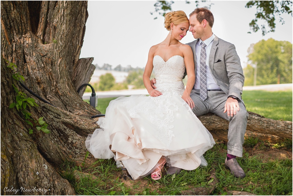 arrington-vineyards-lilac-farms-wedding.jpg