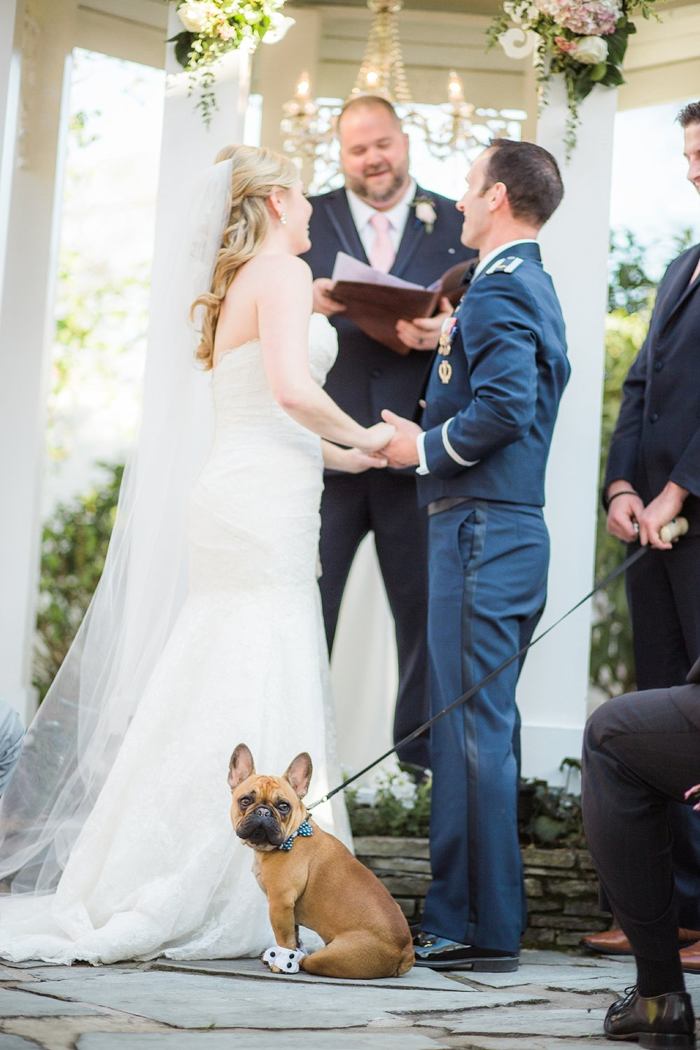 dog-in-wedding-ceremony.jpg