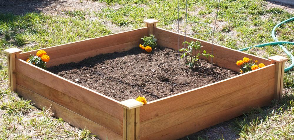 GardenBox.jpg